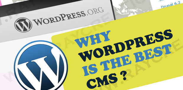 wordpress cms